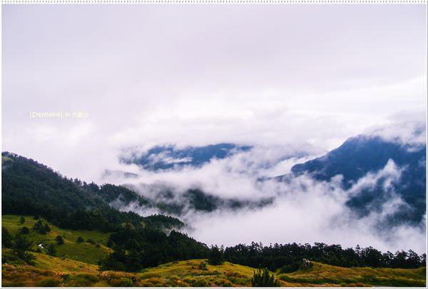 Nantou|南投‧仁愛|我在8度合歡山山上