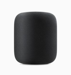 google-homepod_standing_black