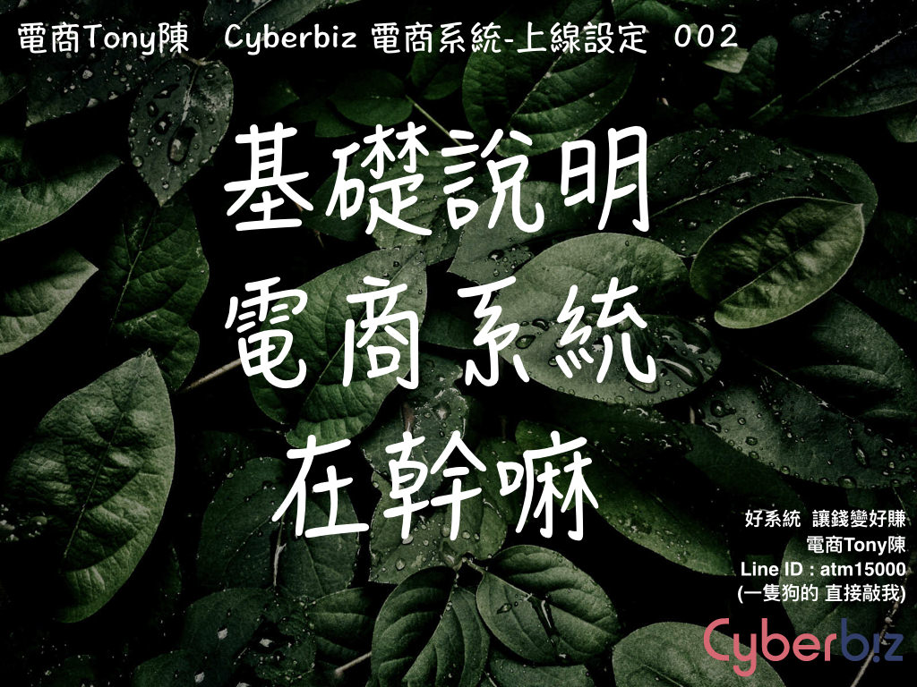 電商Tony陳上線Cyberbiz總覽