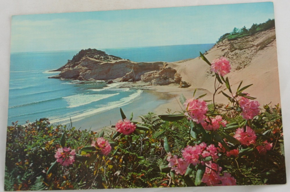 vintage postcard, Oregon Coastline, Coast, folder
