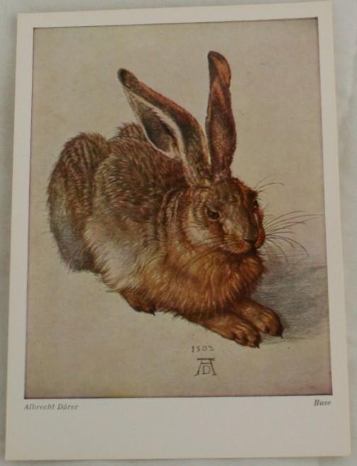 vintage postcard, art, Albrecht Durer, Hase