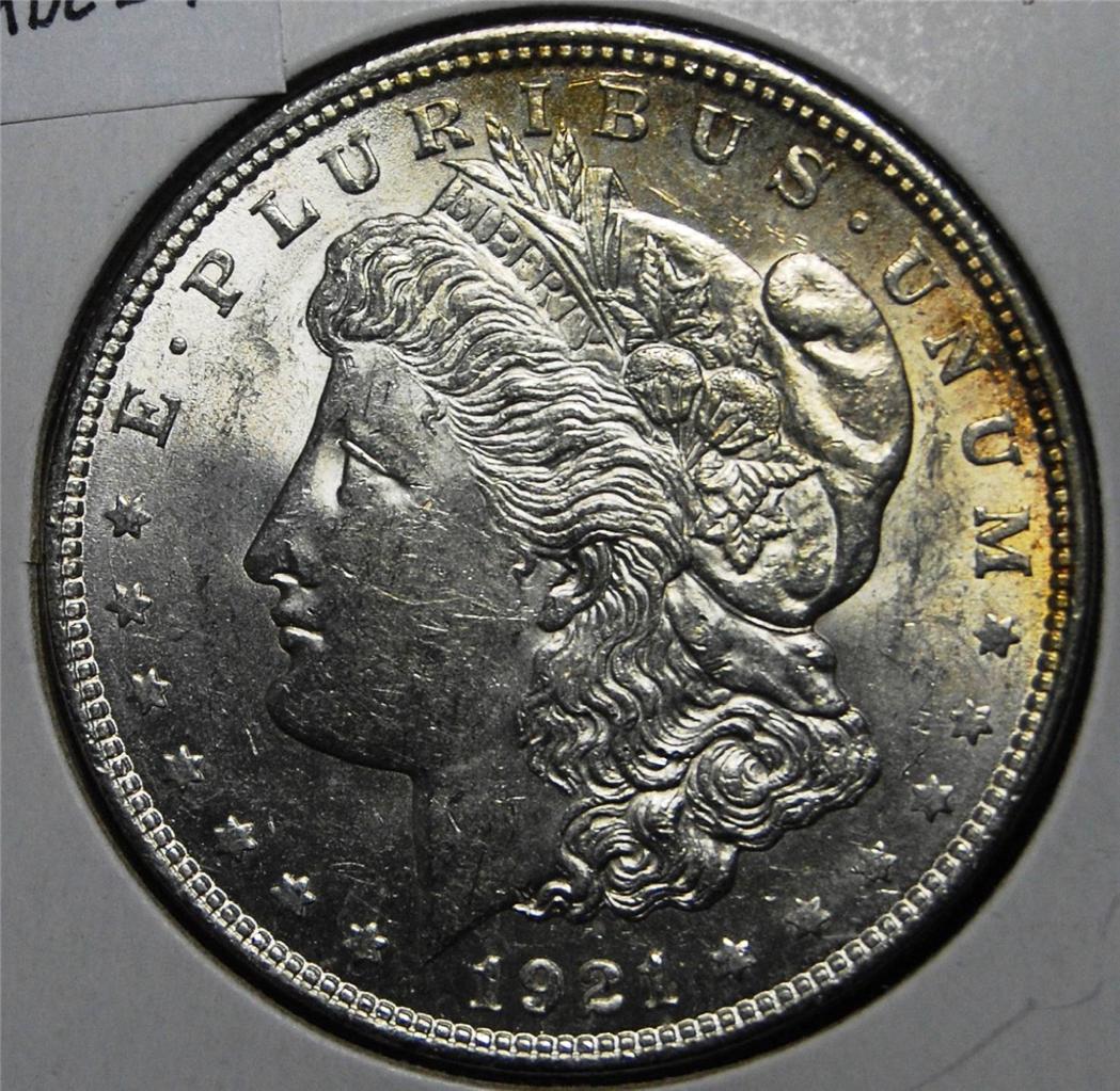 Morgan Appraisal Silver Dollar 1921