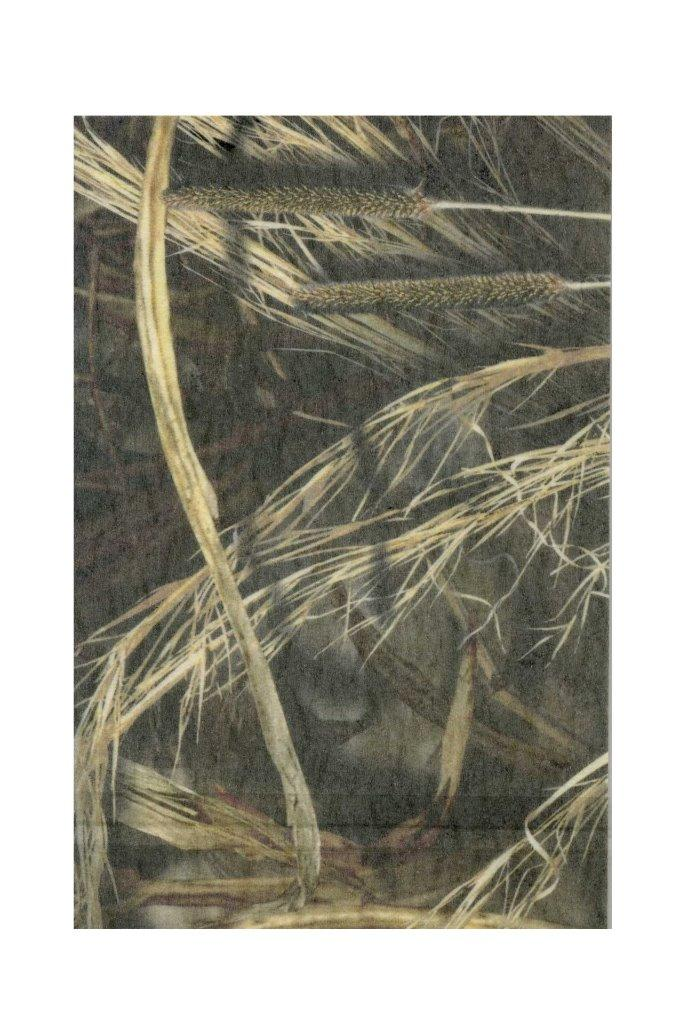Oak Wrapping Camouflage Mossy Paper