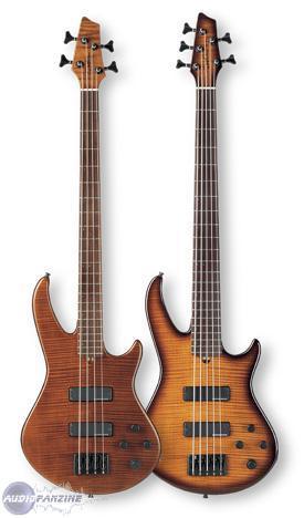 Godin BG5 5-string Bass - Reviews Godin BG-5 Bass ...
