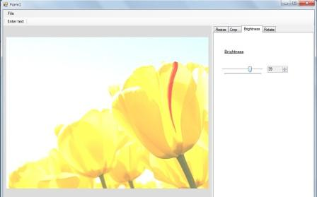 Brightness of the an Image in the Image editor in C#