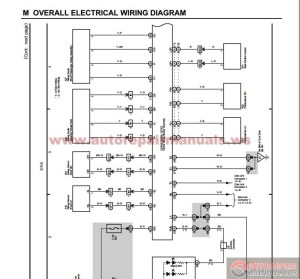 Toyota Land Cruiser 2004 Electrical Wiring Diagram  Engine Mechanical | Auto Repair Manual