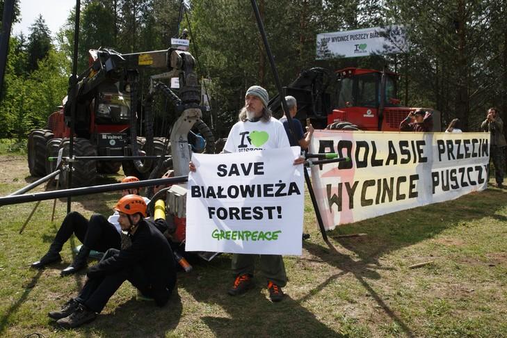 Des écologistes bloquent des engins forestiers utilisés pour la coupe des arbres de la forêt de Bialowieza (est de la Pologne), le 8 juin 2017 / AFP