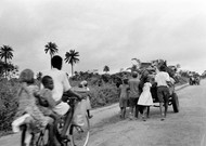 The character of Ijeoma is confronted, child, with the war of Biafra, in 1968.