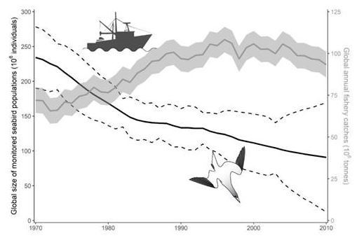Chart showing the decline of the seabird community and the intensification of industrial fishing in the world during the period 1970-2010./Current Biology / Elsevier