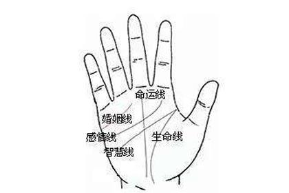 手掌的命運線筆直究竟有何寓意-八字網