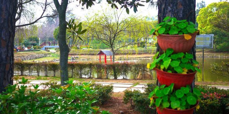 金門林務所│金門森林遊樂區,生態綠化的主推手