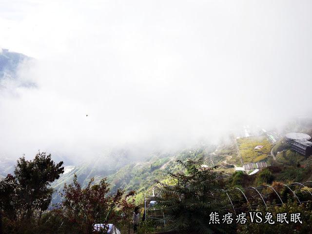 【清境民宿】綠邑田園民宿的早晨景觀