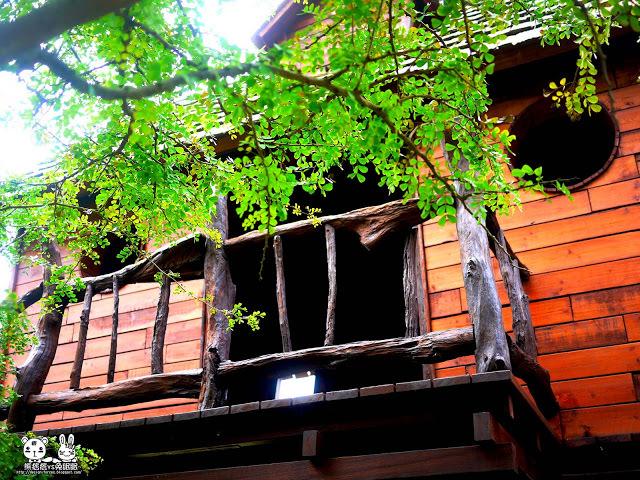 【金門植物園】擁抱自然-尋找森林神祕小木屋