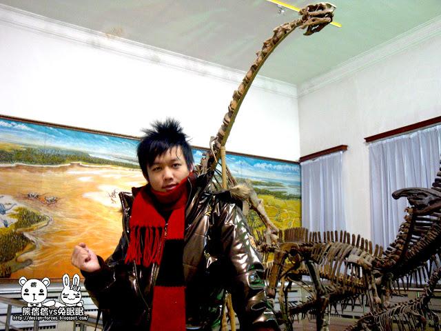 【吉林大學地質博物館】校園有龍