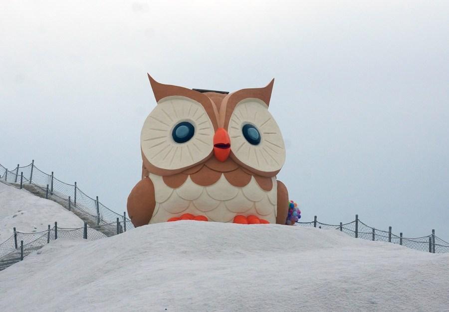 【台南】。兩層樓高全台超萌貓頭鷹出現在七股鹽山