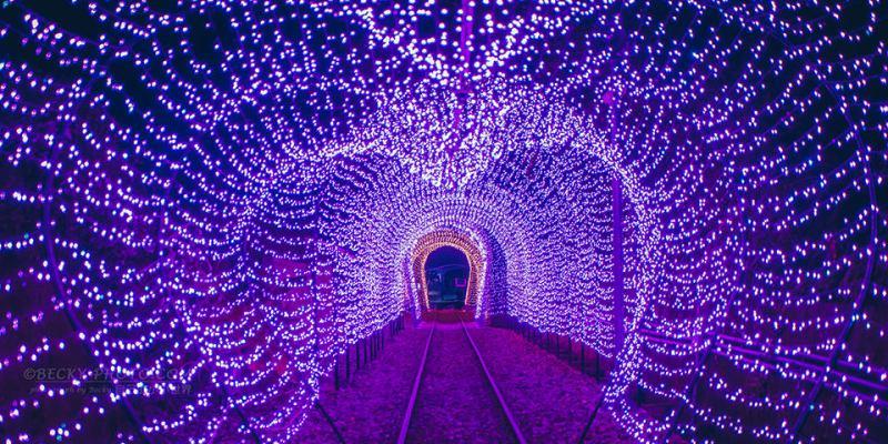 【新北市】。八斗子車站星光隧道、心型玫瑰燈海!夜間加開7-9月