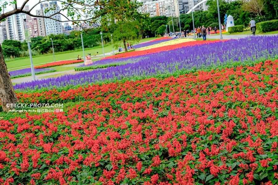 【台北】。捷運公館站看紫色花海~古亭河濱公園騎自行車
