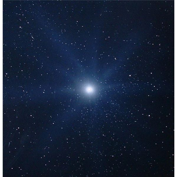 White Dwarf Star and Its Varieties