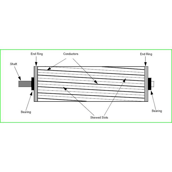 why are the rotor bars of an induction motor skewed
