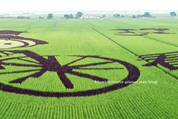 【雲林莿桐景點】莿桐稻田彩繪 - 看到莿桐.可愛的農夫意象娃娃結合人文藝術說稻做稻.9/6起免費開放參觀至11月底稻子收割爲止