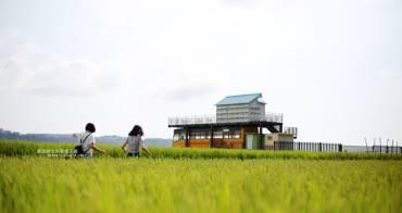 台中外埔│忘憂谷-俯瞰稻田之美,忘憂巴士相伴,稻田的翠綠或波斯菊的繽紛都是IG打卡熱點