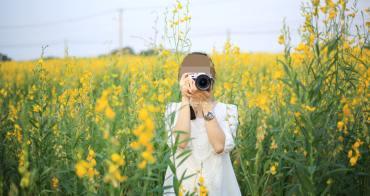 台中沙鹿│太陽麻花海-九天民俗技藝團旁,大片金黃色的大金不換,有著和油菜花一樣的好拍亮黃色花朵