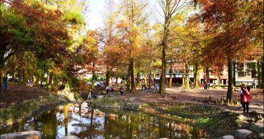 宜蘭   羅東運動公園落羽松正紅,最好親近的落羽松公園,拍下公園一年中最美的時刻