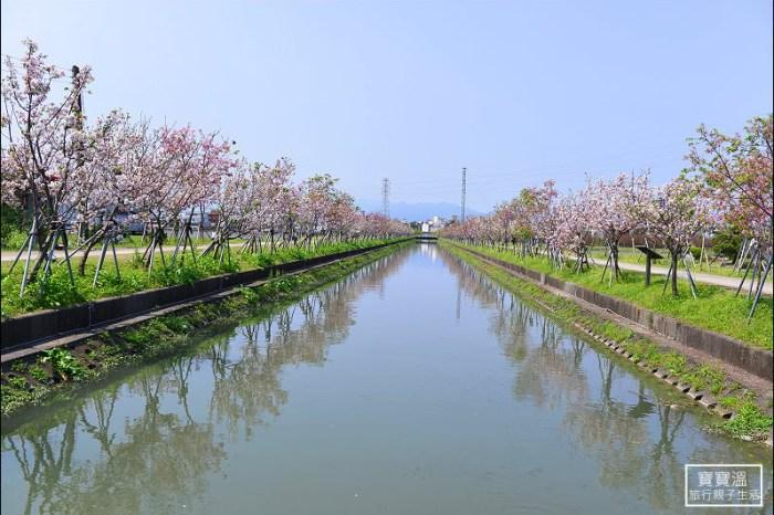 宜蘭羅東賞櫻 | 羅莊櫻花步道~白天夜晚都可賞櫻、超美河畔櫻花倒影,有日本賞櫻的感覺,也是無障礙的賞櫻步道