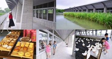 宜蘭礁溪新景點》甲鳥園,打造全台最美的清水模鴨舍,來一趟宜蘭親子生態之旅(雨天備案)
