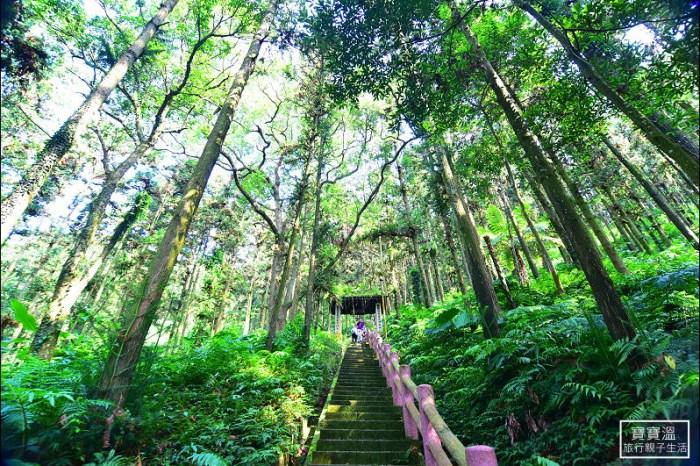 苗栗森林步道》鳴鳳古道 鳴鳳山森林遊憩區,大口呼吸芬多精