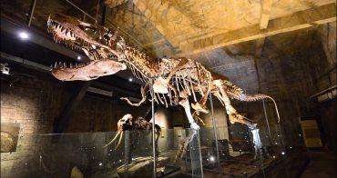 宜蘭蘇澳最新景點》近距離觀賞暴龍化石,Robert-Y瘋狂夢想藝術園區真的超不可思議(雨天備案)