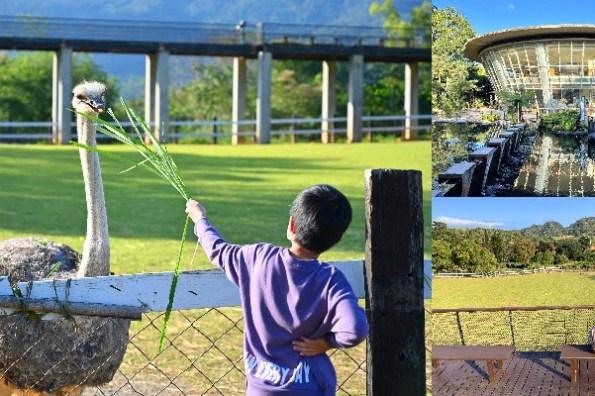 台東親子景點》原生應用植物園,免費牧草無限餵鴕鳥跟羊,空中景觀步道超好拍