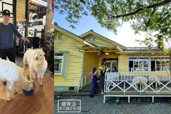 台北陽明山親子餐廳》大衛小小羊景觀餐廳, 草泥馬陪你用餐、免費餵牠吃紅蘿蔔