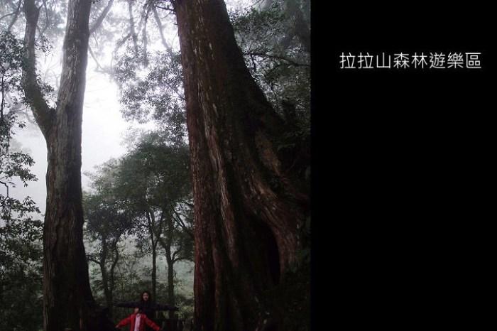 [ 北橫 ] 桃園復興鄉拉拉山森林遊樂區