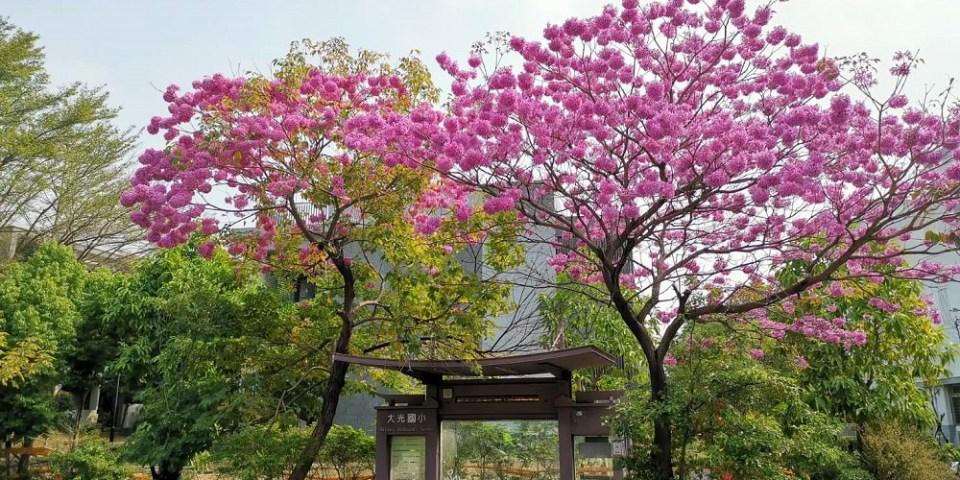 粉紅棉花糖雲朵爆開,美得好療癒|台南夢幻景點