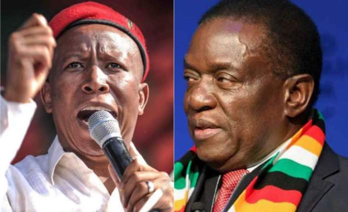 #ZimbabweanLivesMatter: Malema calls for the removal of the Zim Embassy in SA