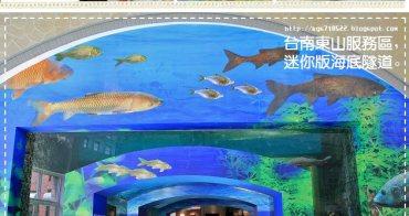 『台南』東山休息站水漾魚隧道,高速公路上的療癒賞魚趣。