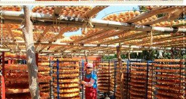 『新竹拍照趣』季節限定色!味衛佳柿餅農場,拍照控的橘紅樂園~