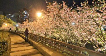 台北櫻花季 | 東湖樂活公園夜櫻粉紅風暴,河畔櫻花林越夜越浪漫~