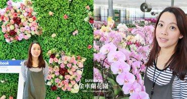 宜蘭景點》礁溪金車蘭花園,美拍花仙子蝴蝶蘭,DIY水耕植栽好有趣~