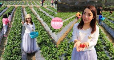 台中景點》潭子草莓世界入園免費!中台灣草莓季開始啦~酸甜的新鮮草莓等你來採!