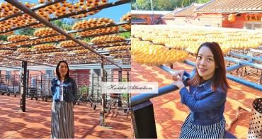 新竹》柿甜蜜蜜!古早三合院與金黃曬柿子場景,在美麗金黃地毯拍出時尚。