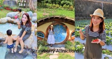 苗栗》大湖景點採草莓一日遊!帶你玩石湯溫泉、愛麗絲的天空、烏嘎彥竹林~