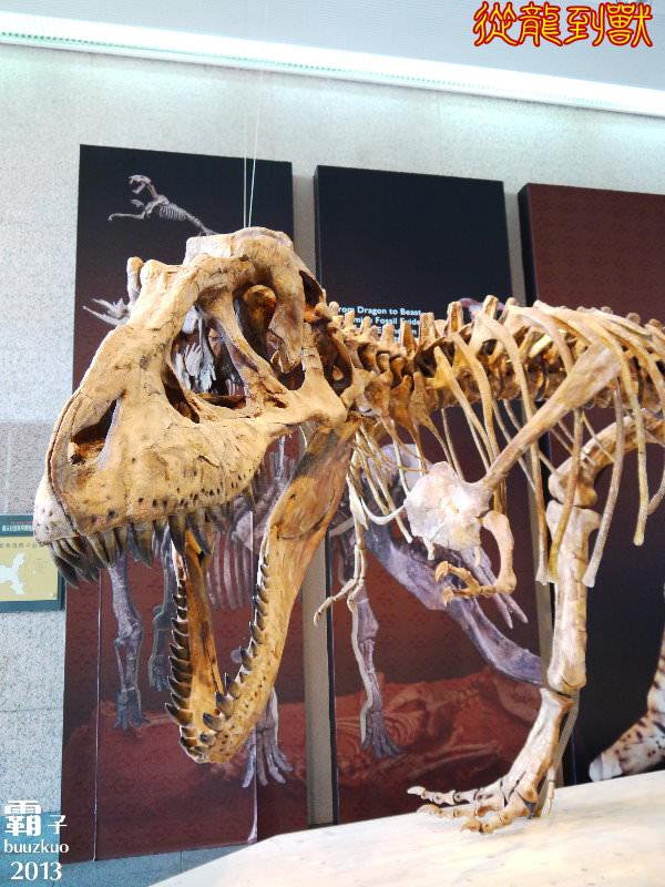 <遊玩 IN 台中> 科博館有大批恐龍出沒拉 ~「從龍到獸大滅絕與大演化」特展 (文末有校園優惠票資訊)