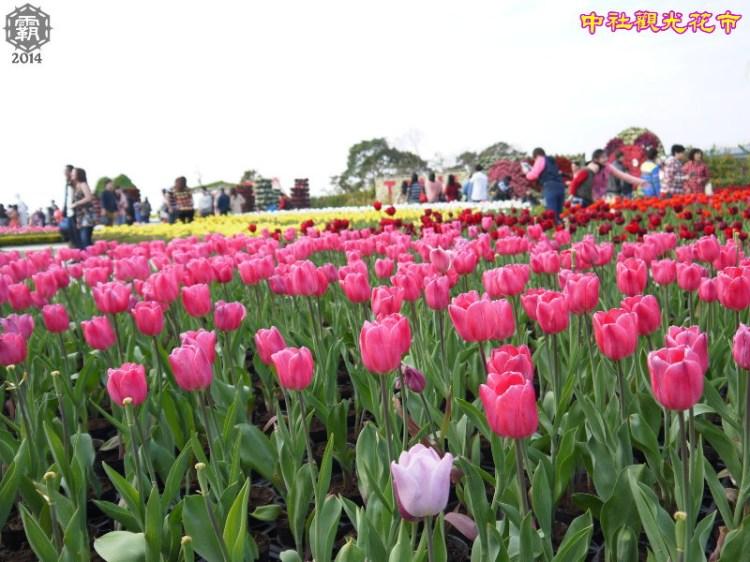 <台中˙遊> 中社觀光花市,2014鬱金香花季(花季至3月中)