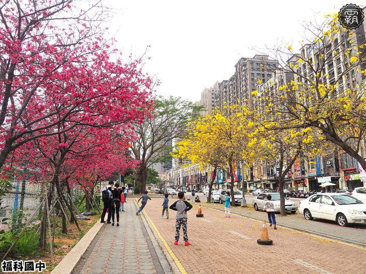 20180307230550 92 - 一次能捕捉到盛開的櫻花與黃花風鈴木耶~市區內賞花小確幸~