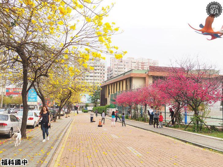 20180307230558 28 - 一次能捕捉到盛開的櫻花與黃花風鈴木耶~市區內賞花小確幸~