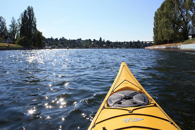 But you know there's no worse place to have a fight than in a two-person kayak.