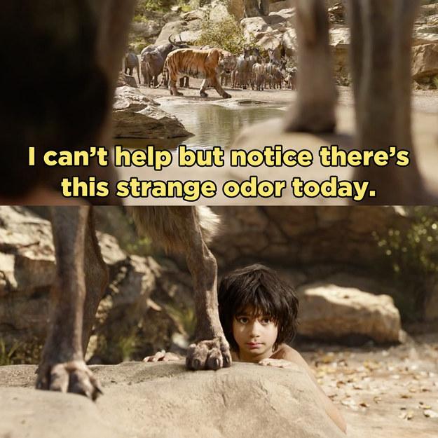 Look at him stalking Mowgli.