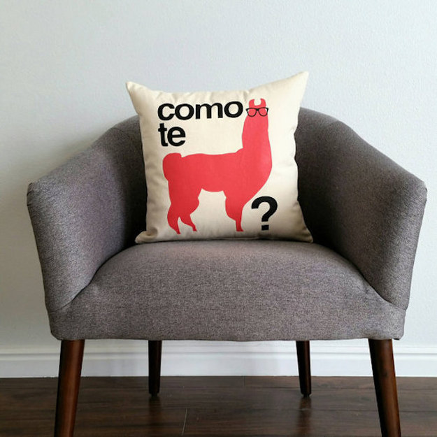 This clever throw pillow.